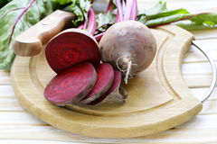 Raw fresh organic beets. With green leaves Stock Images