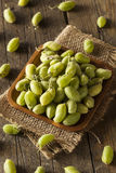 Raw Fresh Organic Green Garbanzo Beans Stock Photography