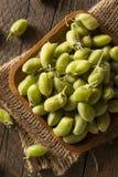 Raw Fresh Organic Green Garbanzo Beans Royalty Free Stock Photos