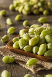 Raw Fresh Organic Green Garbanzo Beans Stock Photo