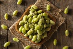Raw Fresh Organic Green Garbanzo Beans Stock Photos