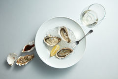Raw fresh oyster shellfish. Raw oyster shellfish with lemon in white plate and glass wine - seafood style Royalty Free Stock Photo