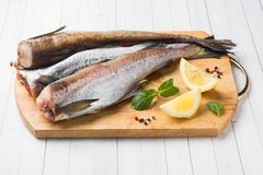 Raw fresh Pollock fish on a wooden Board with lemon.  royalty free stock photos