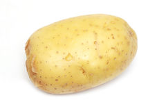 Raw fresh potato Stock Image