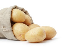 Raw fresh potatoes in burlap bag white copy space Royalty Free Stock Images