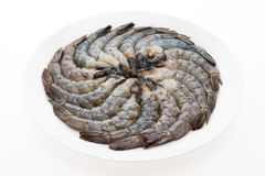 Raw fresh prawn Royalty Free Stock Images