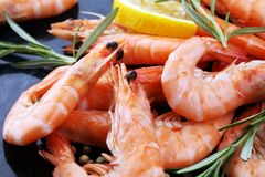 Free Raw Fresh Prawns Langostino Austral. Shrimp Seafood With Lemon A Royalty Free Stock Photos - 111658958