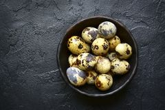 Raw fresh quail eggs.Top view with copy space. Raw fresh quail eggs in a bowl over black slate, stone or concrete background.Top view with copy space Stock Photography