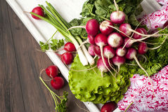 Raw fresh radish. Bunch on white wooden table Royalty Free Stock Photos