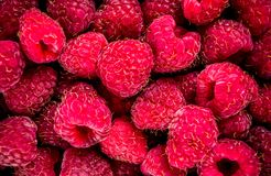 Raw fresh raspberry. Close top view, fruit background Royalty Free Stock Image