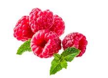 Raw fresh raspberry. Isolated on white Stock Photography
