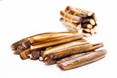 Raw and fresh razor shells. Stock Images