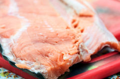 A raw fresh red fish fillet. A large piece of raw fresh red fish fillet Stock Images