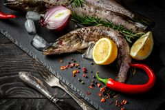 Raw fresh river fish. Preparing for cooking. Fresh fish at the plate. Fish cooked at home. top view, space for text.  royalty free stock photography