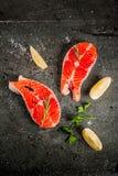 Raw fresh salmon fish Royalty Free Stock Images