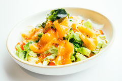 Raw fresh salmon meat sashimi with vegetable salad Stock Image