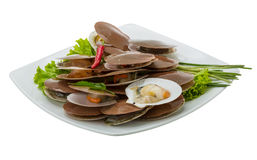Raw fresh scallops. With salad and chili Stock Photo