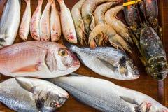 Raw fresh seafood-lobster, Dorado fish, king prawns, sea bass, o. Mar stock photo