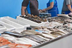 Raw fresh seafood for sale at the market Royalty Free Stock Image