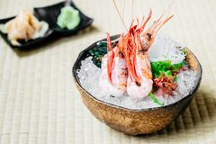 Raw and fresh shrimp or prawn sashimi. Japanese food style Stock Image