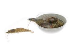 Raw fresh shrimps Royalty Free Stock Image
