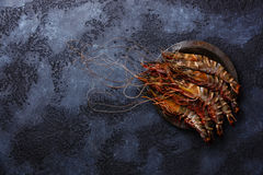 Raw fresh Tiger Prawn Shrimp. In metal plate on black background copy space Royalty Free Stock Images