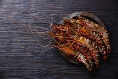 Raw fresh Tiger Prawn Shrimp. In metal plate on burned black wooden background Stock Image