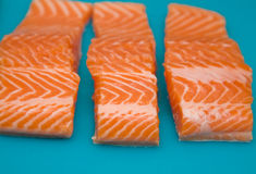 Raw fresh trout portions Stock Image