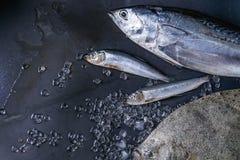 Raw fresh tuna, herring and flounder fish royalty free stock photography