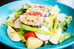 Raw and fresh tuna meat with sesame and salad Royalty Free Stock Photos