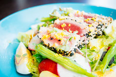 Raw and fresh tuna meat with sesame and salad Stock Photography