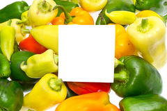 Raw and Fresh Vegetable Bell Pepper Royalty Free Stock Image