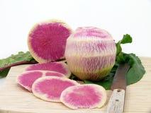 Fresh cutting watermelon radish Stock Photos