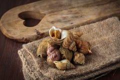 Raw fresh whelks Stock Photos