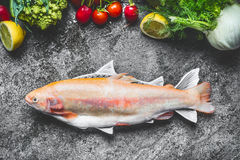 Raw fresh whole Gold Rainbow trout in fish dish with vegetables ingredients on gray concrete background , top view. Healthy Food concept Royalty Free Stock Photography