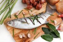 Raw fish on block chop Royalty Free Stock Image