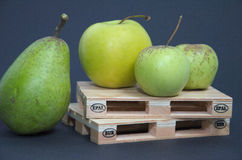 Raw fruit photo of apples and pear standing on pallet prepared for transport. Export shippong goods. On blue bakcground Royalty Free Stock Photography