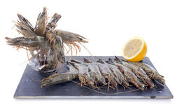 Raw gambas Stock Photos
