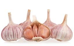 Raw garlic bulbs Stock Photos