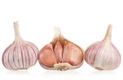 Raw garlic bulbs Royalty Free Stock Images