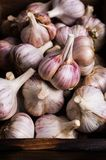 Raw garlic cloves. In a box on wooden background. Selective focus Stock Photo