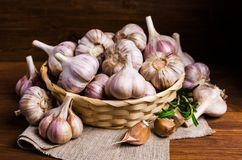 Raw garlic cloves. In a box on wooden background. Selective focus Royalty Free Stock Photo