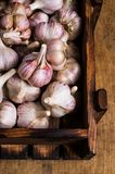 Raw garlic cloves. In a box on wooden background. Selective focus Stock Photography
