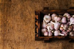 Raw garlic cloves. In a box on wooden background. Selective focus Stock Photos