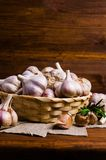 Raw garlic cloves. In a box on wooden background. Selective focus Royalty Free Stock Images