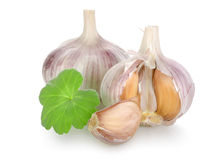 Raw garlic isolated(0).jpg Stock Photography