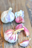 Raw garlic on a wooden plank Stock Photos