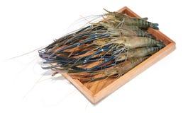 Raw giant freshwater prawn, giant river shrimp. Isolate on white background Stock Photography