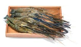 Raw giant freshwater prawn, giant river shrimp. Isolate on white background Stock Photo