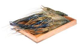 Raw giant freshwater prawn. Giant river shrimp isolate on white background Royalty Free Stock Image